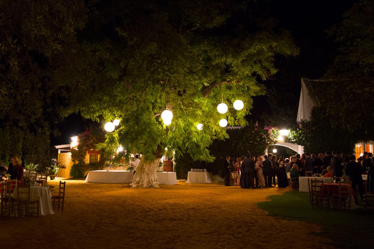 lámparas en árbol boda